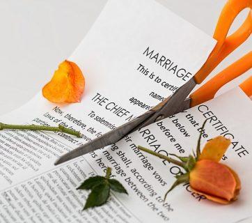 prawnik rozwody